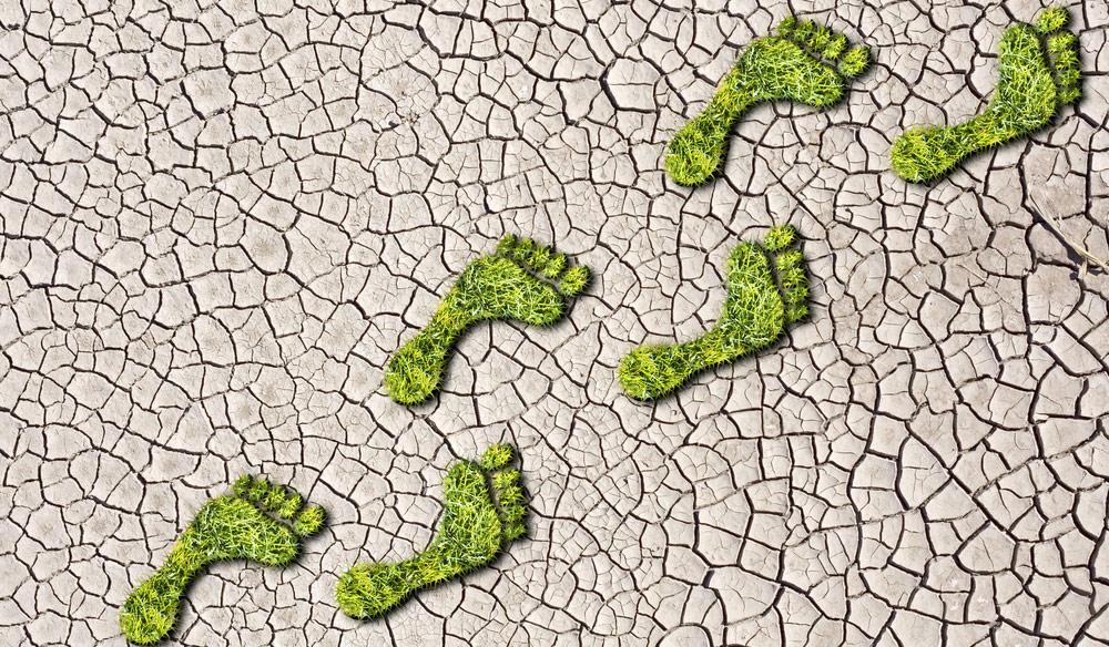 carbon emissions management